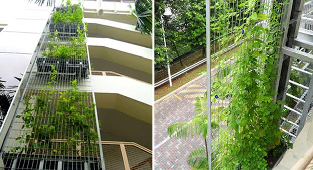 Vertical-Garden-06