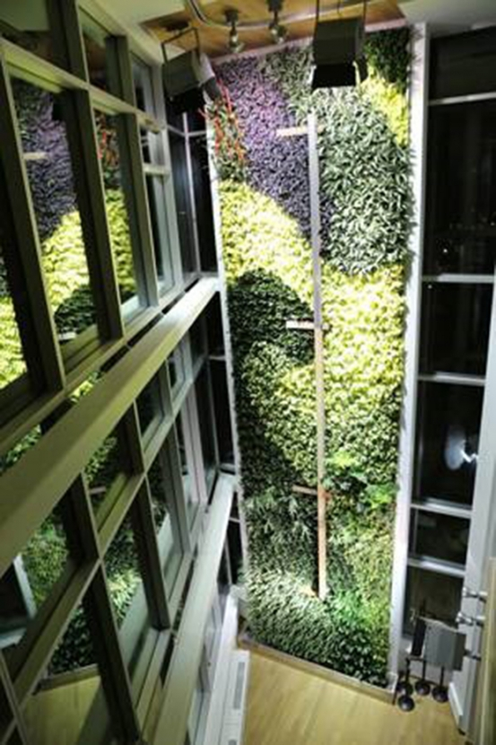 The first stage of the world's tallest living green wall