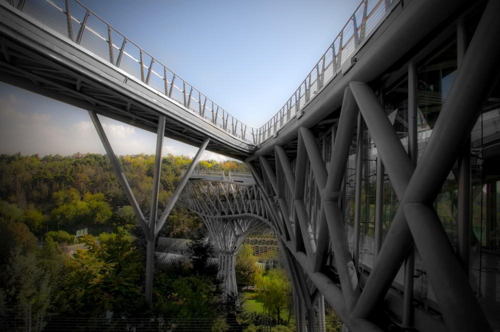 خوانش « پل طبیعت » به مثابه فضای جمعی