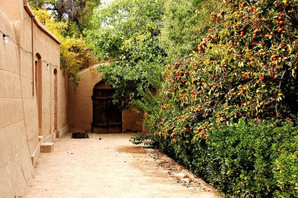درختان مثمر و حواس انسانی در باغ ایرانی