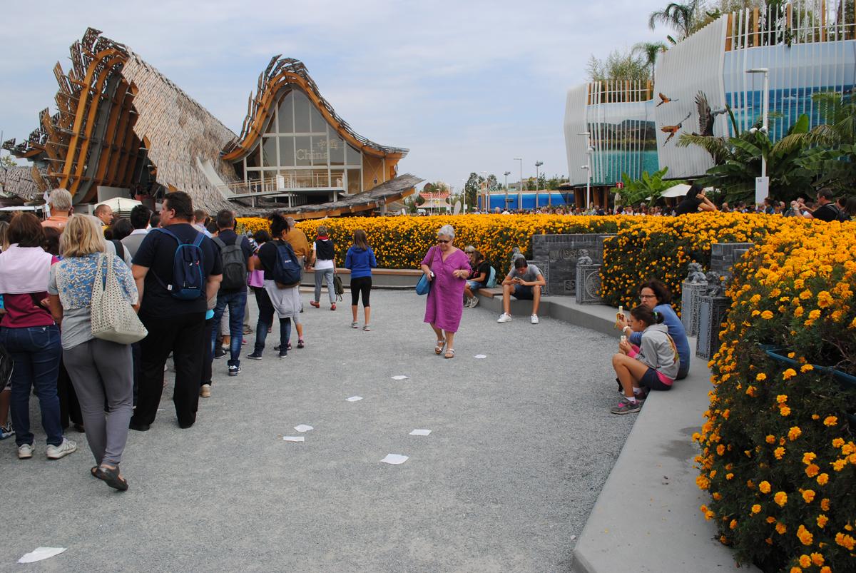 سرزمین امید؛ گزارش غرفه چین در اکسپوی 2015 میلان