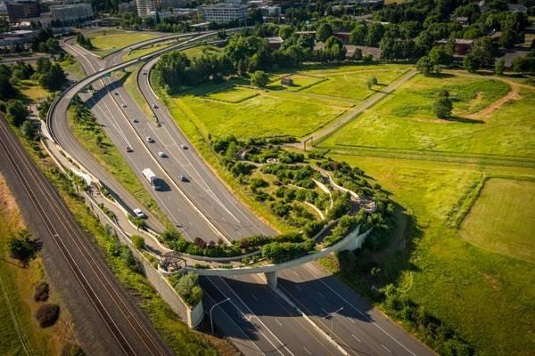 30 شرکت مطرح در زمینه معماری منظر