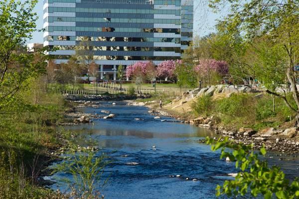 30 for Landscape architecture firms