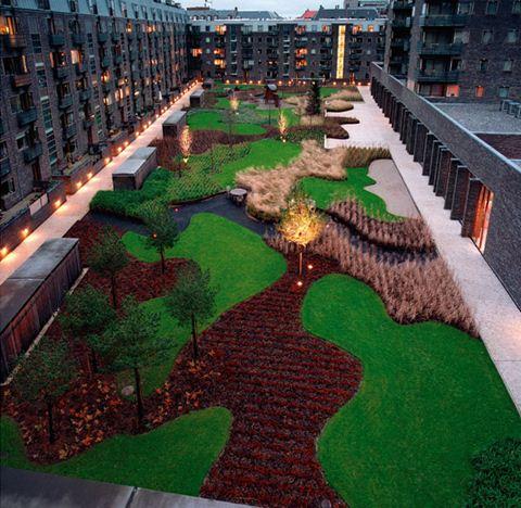 Charlotte Garden