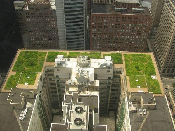 صرفه جویی در هزینه ها با استفاده از بام سبز