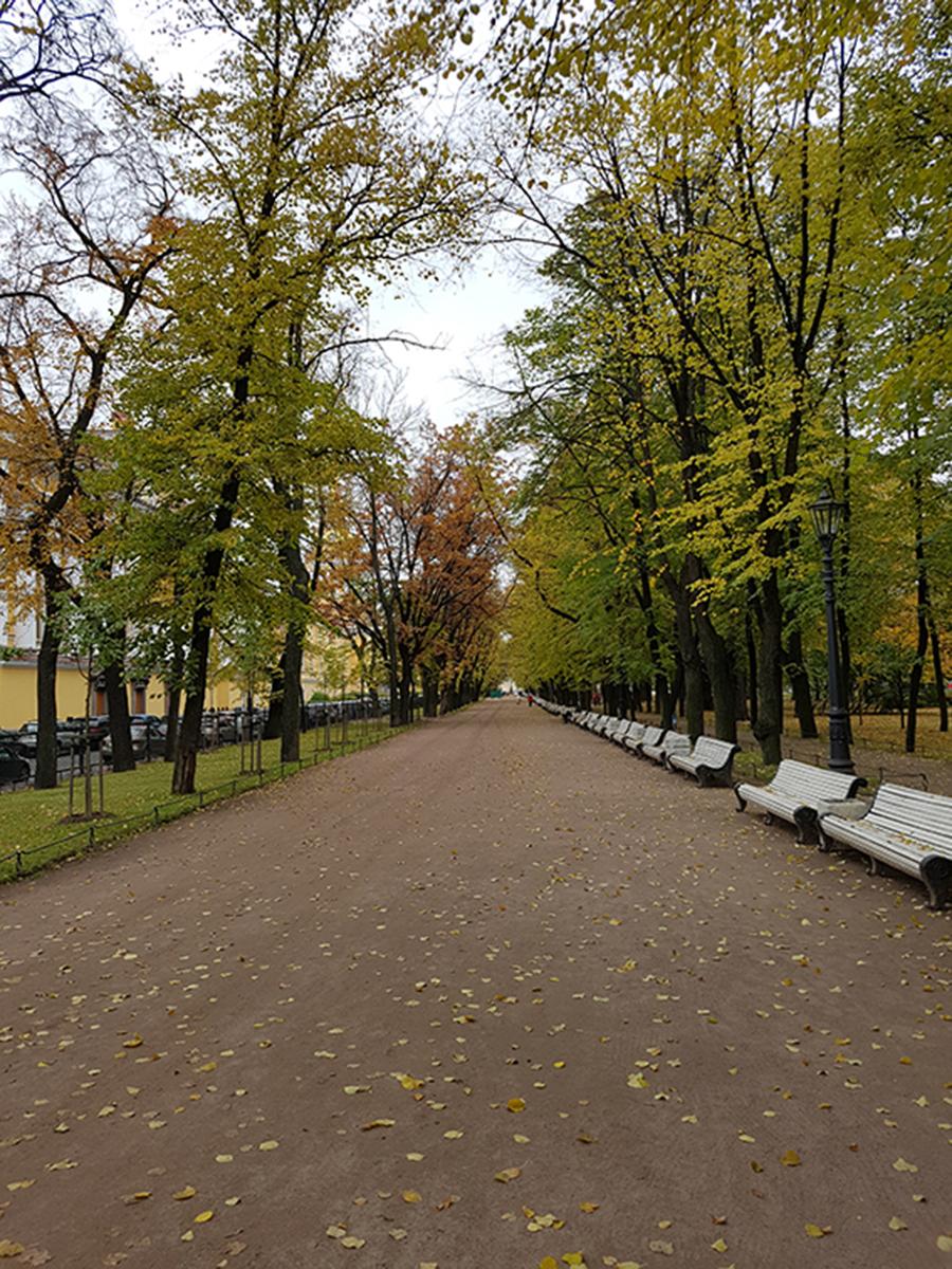 جایگاه فضاهای جمعی در زندگی شهری مسکو