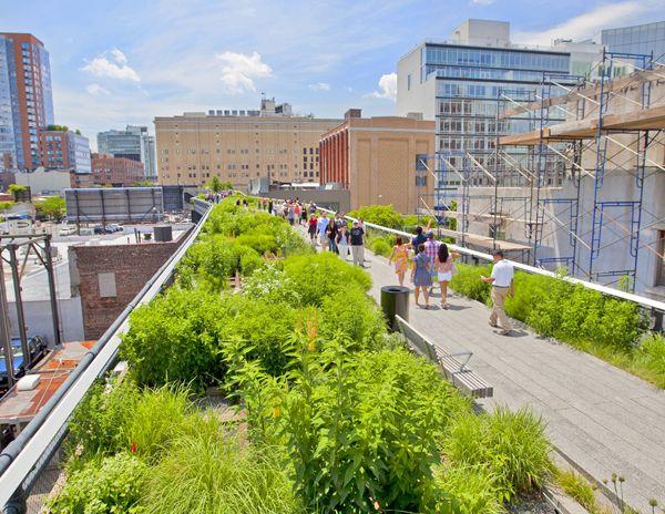 طراحان برتر در زمینه طراحی کاشت در فضاهای سبز