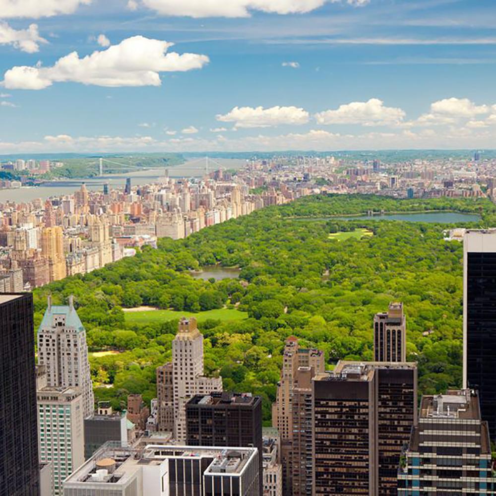 ارزش املاک سنترال پارک نیویورک