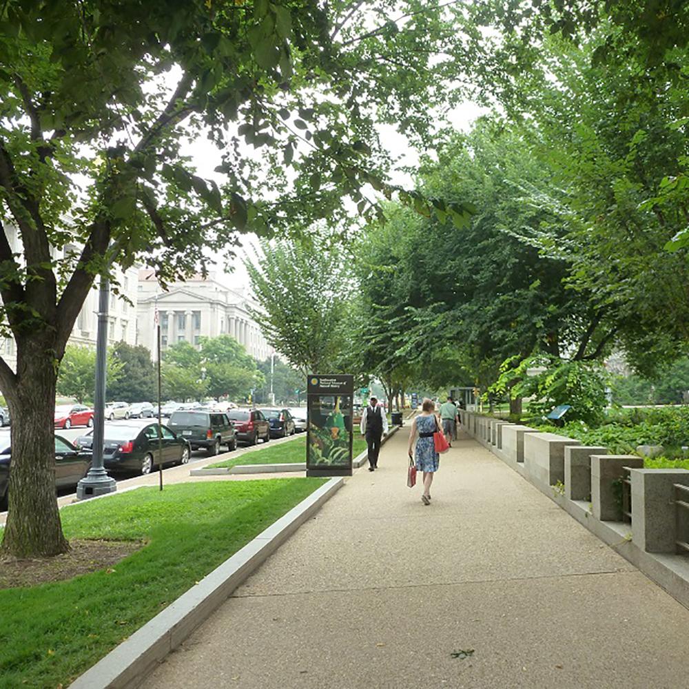 مزایای وجود درختان در پنج شهر از ایالات متحده امریکا
