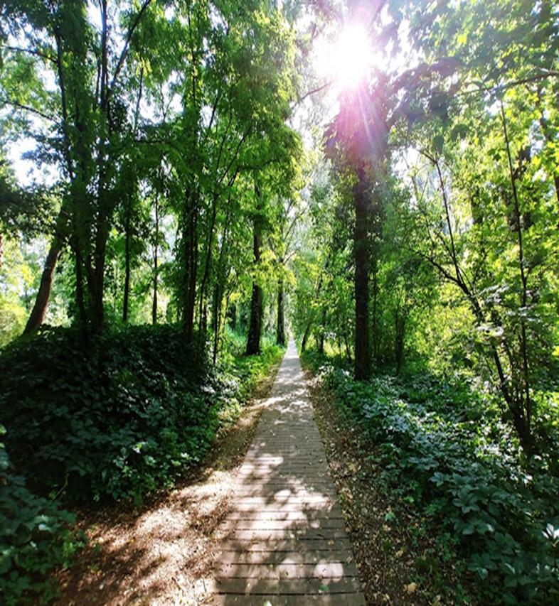 پارک ملی فیسین در فرانسه