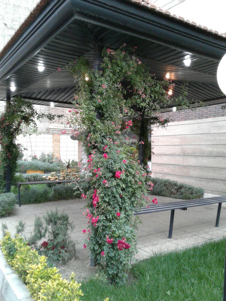 تلفیق گیاه و سازه برای ایجاد فضای مطلوب و تاکید بر فضا