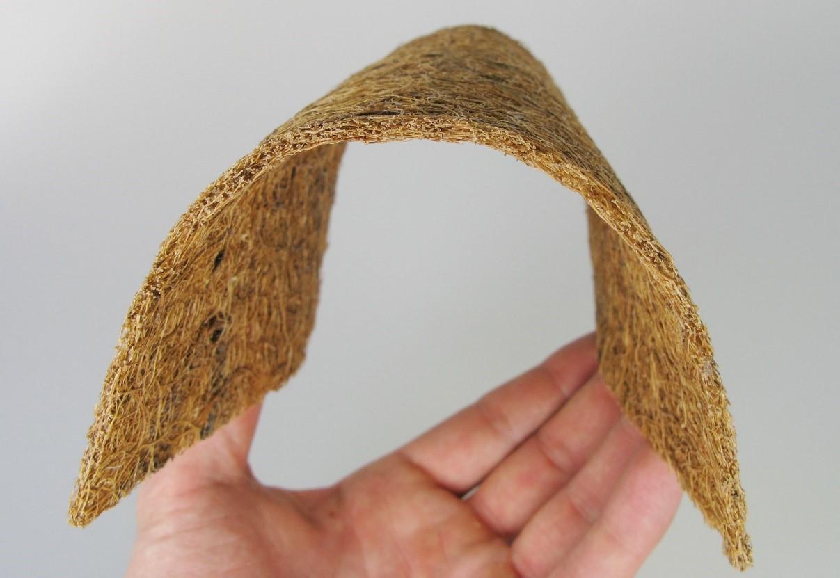 خواص و کاربردهای اکوبورد؛ محصولی از پوست نارگیل