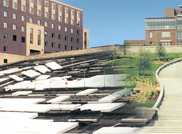 بررسی ژئوسنتتیک ها در معماری منظر